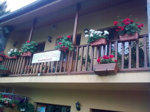 Centro de Jardinería Motomar Oviñana