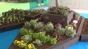 Bancal huerto o jardín