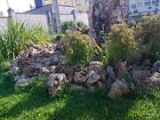Estanque y jardín