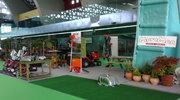 Feria de Avilés